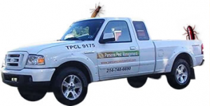 Parsons pest control services in Dallas, Texas