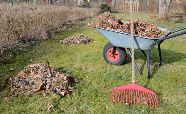 Farming Supplies – Getting Everything You Need from Gardening