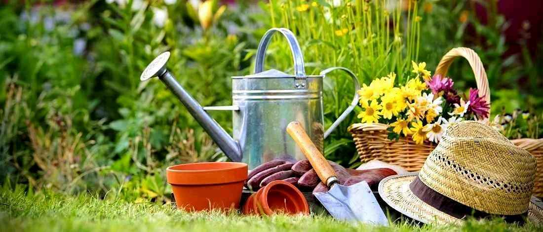 Issues and Suggestion on Garden Products