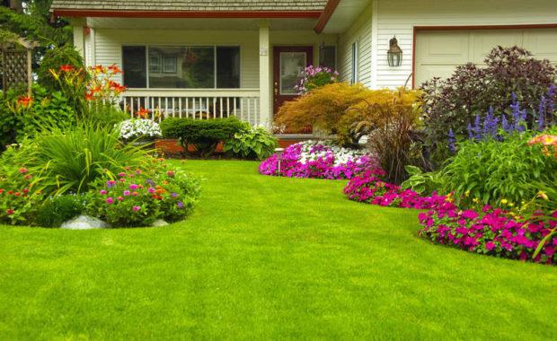 Tips to Make your Garden Grow Beautiful