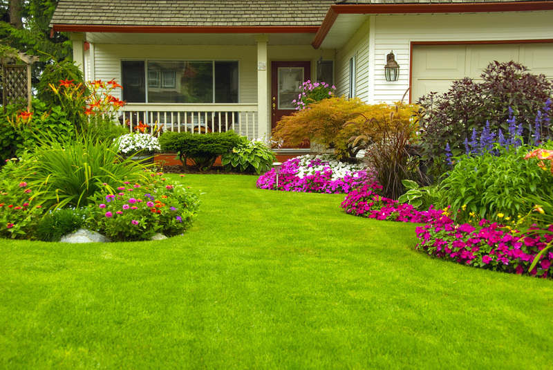 Tips to Make your Garden Grow Beautiful